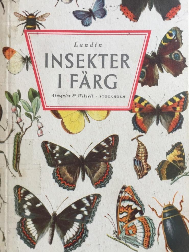 insekterifärg